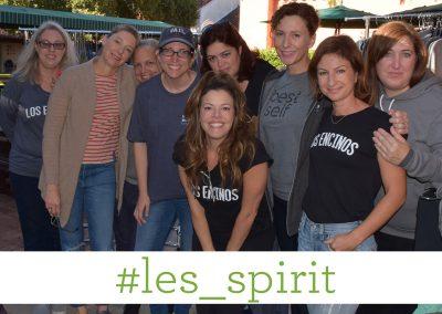 #les_spirit