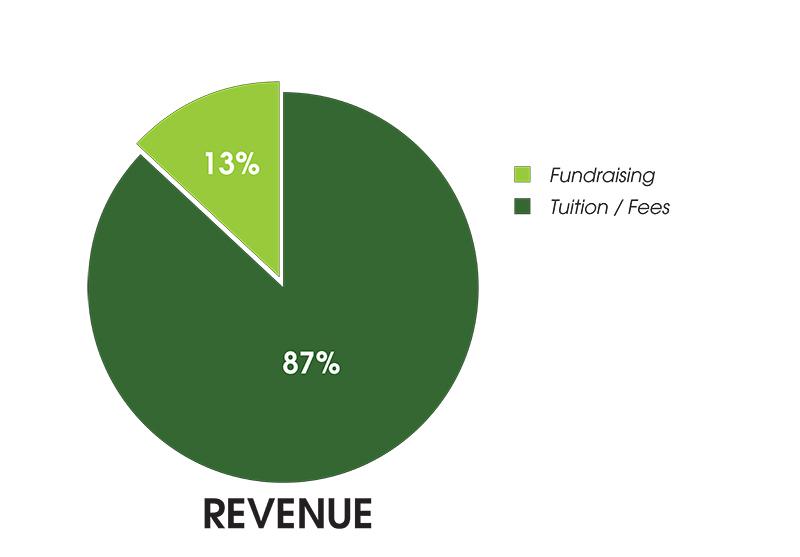 2019-2020 Revenue Graph